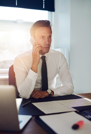 paralegal: Business man having a conversation on the phone at his office