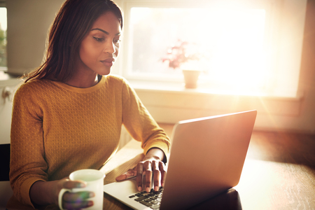 woman searching: Serious Black adult single female sitting at table holding coffee cup and typing on laptop with light flare coming through window