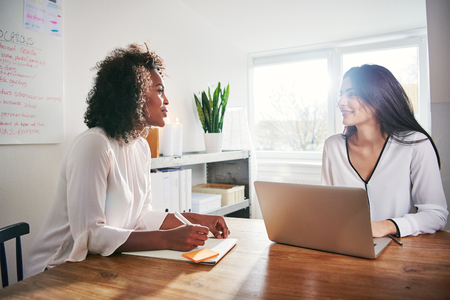 Two young attractive multiracial business colleagues having a discussion planning the strategy of their new startup business seated at a desk in a high key office