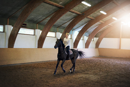 saddler: Full-size shot of a blond lady riding a black horse