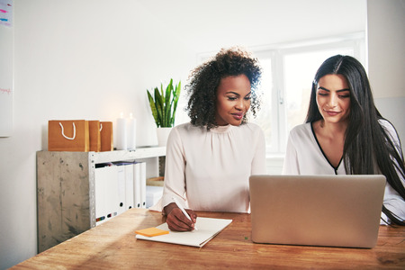 Two successful women entrepreneurs running an ebusiness together sitting at a laptop computer having a meeting and writing notes, with copy space