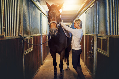 Smiling young woman standing inside a stable putting a saddle on her chestnut horse before for a ride  Stock Photo
