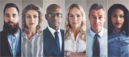 Collage de retratos de un grupo de edad étnicamente diverso y mixto de profesionales de negocios enfocados Foto de archivo