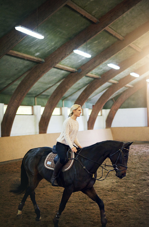 Blonde female practicing trotting on dark horse in indoor riding hall.  Reklamní fotografie