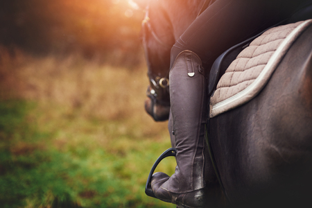 Closeup of a woman in riding gear sitting in a saddle on a chestnut horse horse while out for ride in the countryside in autumn Stock Photo