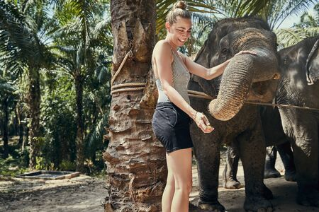 Smiling woman feeding a group of Asian elephants bananas at an animal sanctuary in Thailand 免版税图像