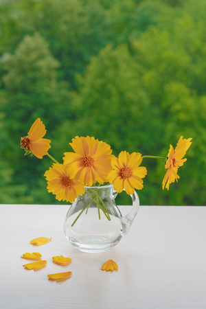 Beautiful bouquet of yellow flowers in a glass jug on a green background. Plenty of space for text. For a calendar illustration