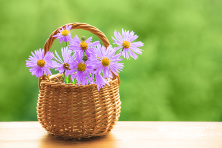 Beautiful summer background - lilac flowers in basket on green blurred background. Plenty of space for text.