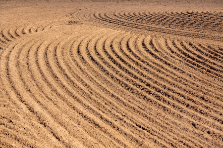 brown ground plowed field, harrow lines. Arable background. Pattern of curved ridges and furrows in a humic sandy field. A freshly ploughed field showing a geometric pattern of shadows in the furrows