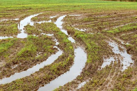 Field and road after heavy rains. Deep ruts from the wheels of agricultural machinery, puddles and dirt on the field. Severe weather conditions during field work due to rain in agriculture. Stockfoto