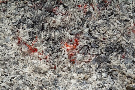 The gray background or texture is represented as ashes from burnt leaves on the edges and smoldering flames inside. Mesmerizing orange fire for any design. Horizontal background, selective focus. Stok Fotoğraf
