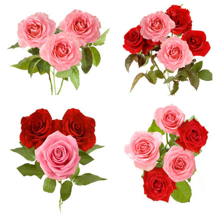 Beautiful roses bunch set isolated on white background