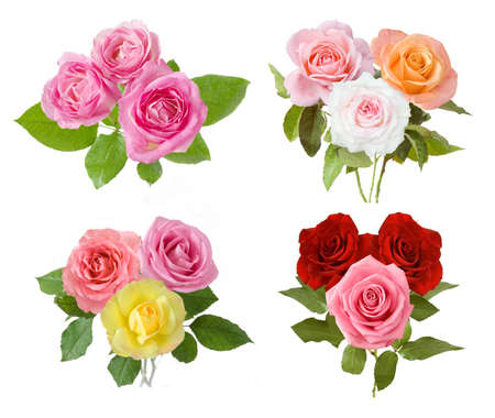 Beautiful roses bunch set isolated on white background
