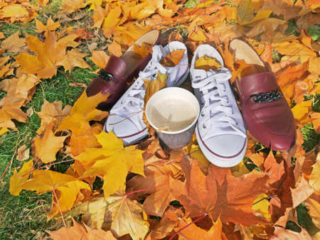 white sneakers and cup of coffee on lawn with brught autumn leaves, autumn mood concept, flay lay