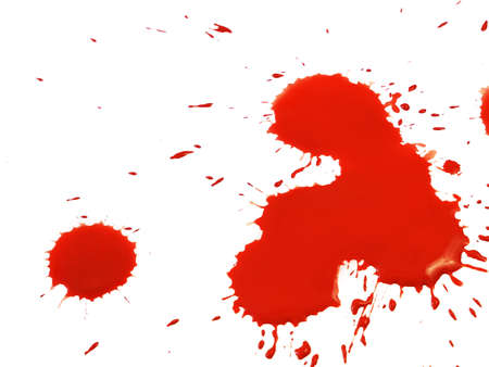red blood drops isolated on white background. Blood Drops and splashes. Can be used on halloween design, medical, healthcare, closeup
