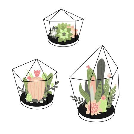 Wektor zestaw z uroczymi kaktusami i sukulentami w terrariach. Ilustracja z roślinami domowymi w stylu skandynawskim.