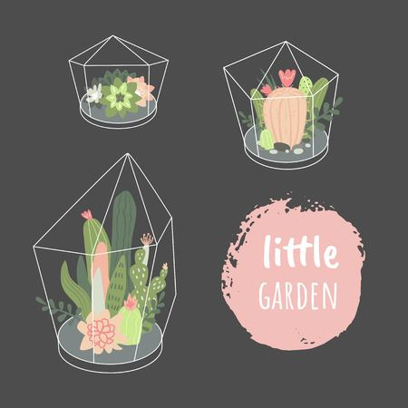 Little garden. Vector set with cute cactuses and succulents in terrariums. Illustration with home plants in scandinavian style. Illustration