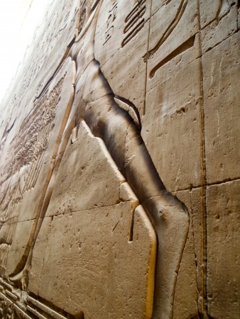 hieroglyphs in Temple of Edfu  Pharaoh