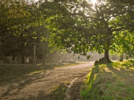 Rural park in Vigo in Galicia