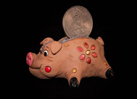 Pig with a coin Imagens