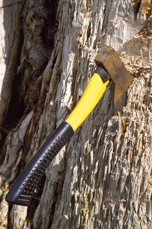 slasher: Hatchet in a tree Stock Photo
