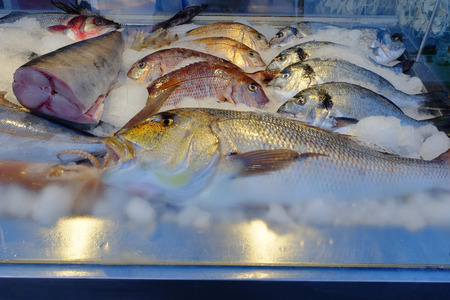 Closeup view of fresh and raw fishes