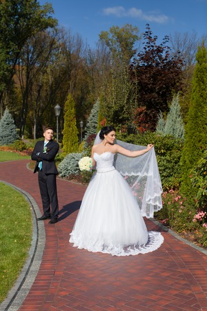The newlyweds are posing in the photo in the summer park on the mall Standard-Bild