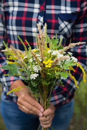 Wild flowers in female hands
