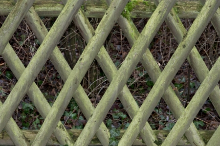 fence Stock Photo - 17032082