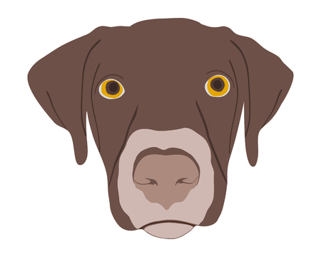 Silhouette of a dogs head Stock Vector - 4198874