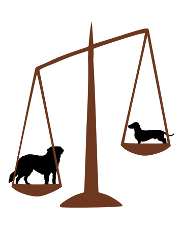 Saint Bernard and sausage dog on a balance Vector