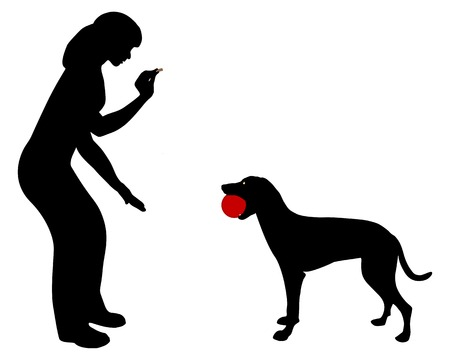 Dog obedience: Command:trade Vector