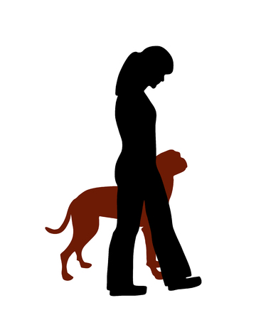 pointer dog: Dog training (obedience): command heel Illustration