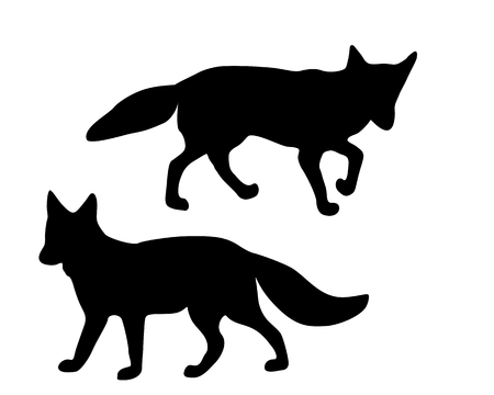 fox: The black silhouettes of two foxes on white