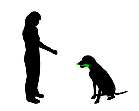 Dog training (obedience): command hold Stock Vector - 4327737