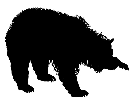 Grizzly Stock Vector - 4440689