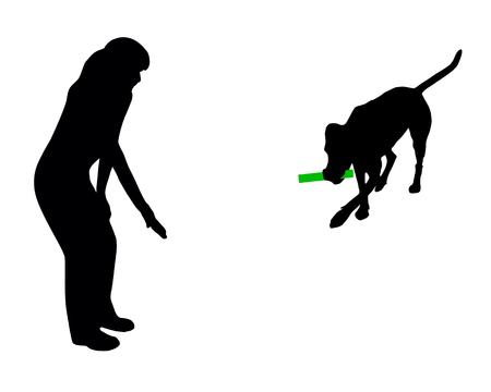 Dog training (obedience): command: bring stick Vector