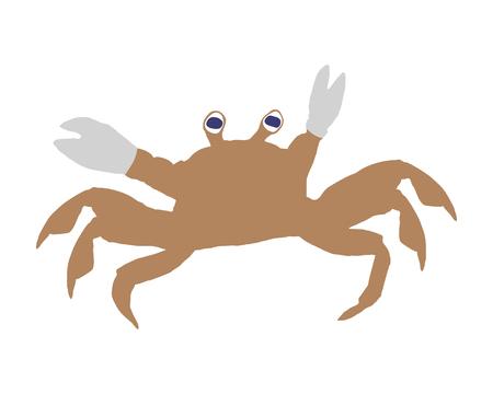pincer: Crab