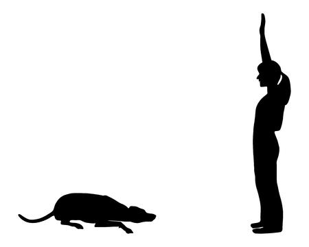 obedience: Formaci�n perro (obediencia): comando: abajo