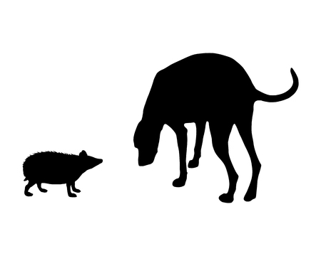 sniff: The black silhouettes of dog and hedgehog on white  Illustration