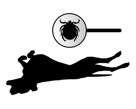 dog bite: Cane � graffiare il suo ritorno a causa di un segno di spunta  Vettoriali