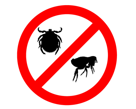 an insect: Prohibition sign for fleas and ticks on white background