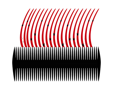 head louse: Lice comb and hair with nits on white background Illustration