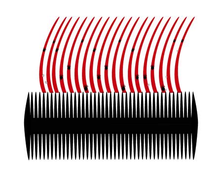 piojos: Peine para piojos y liendres en el cabello con fondo blanco