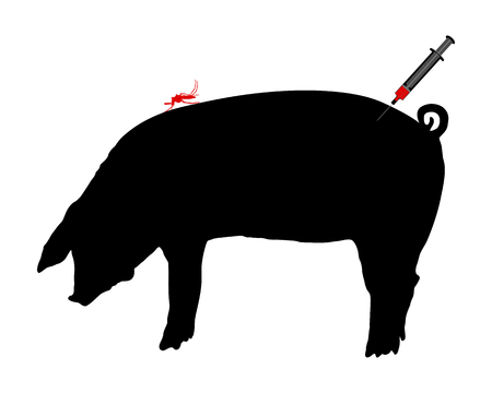 Pig gets an immunization against diseases of midge bites Stock Vector - 5198205