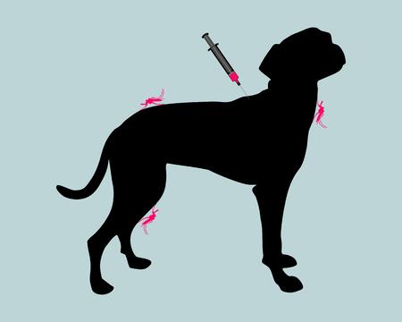 immunization: Dog gets an immunization against a disease of mosquito bites Illustration