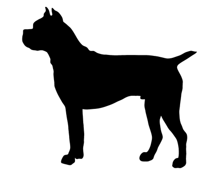 dog silhouette: The black silhouette of a German  Boxer dog Illustration