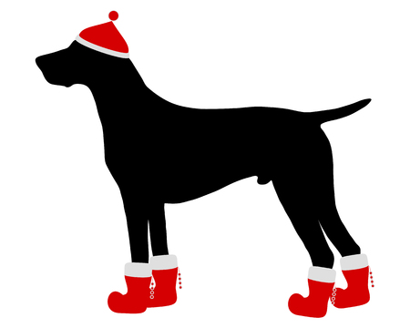 red boots: German Shorthaired Pointer with red christmas cap and boots