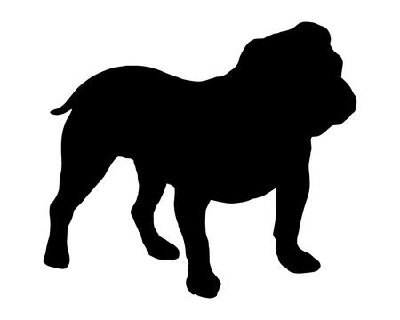 De zwarte silhouet van een Engelse Bulldogge