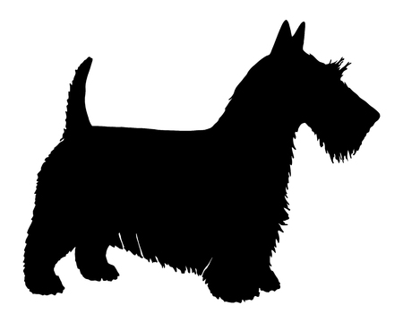 The black silhouette of a Scottish Terrier Vector